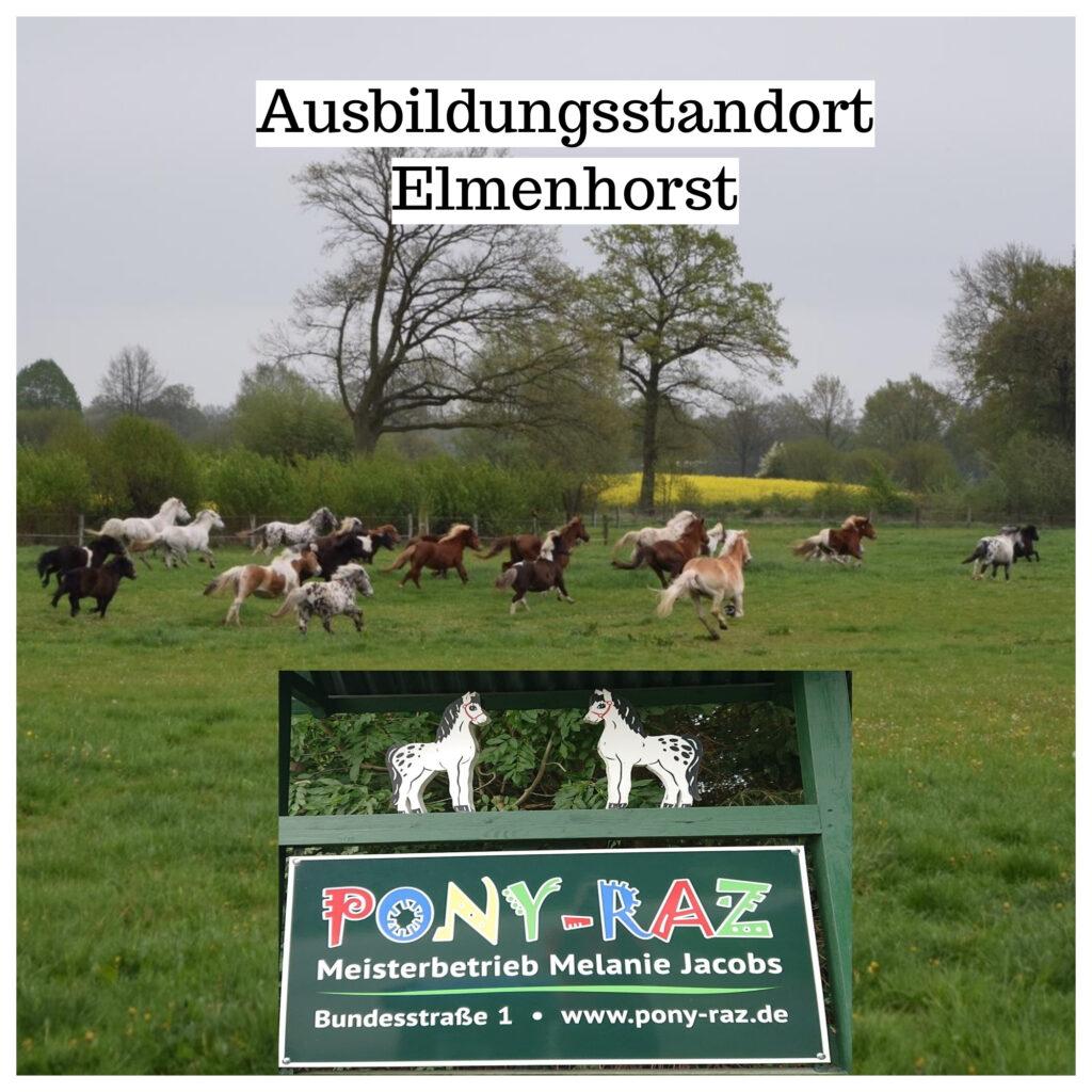 Ausbildungsstandort Elmenhorst/Bargteheide